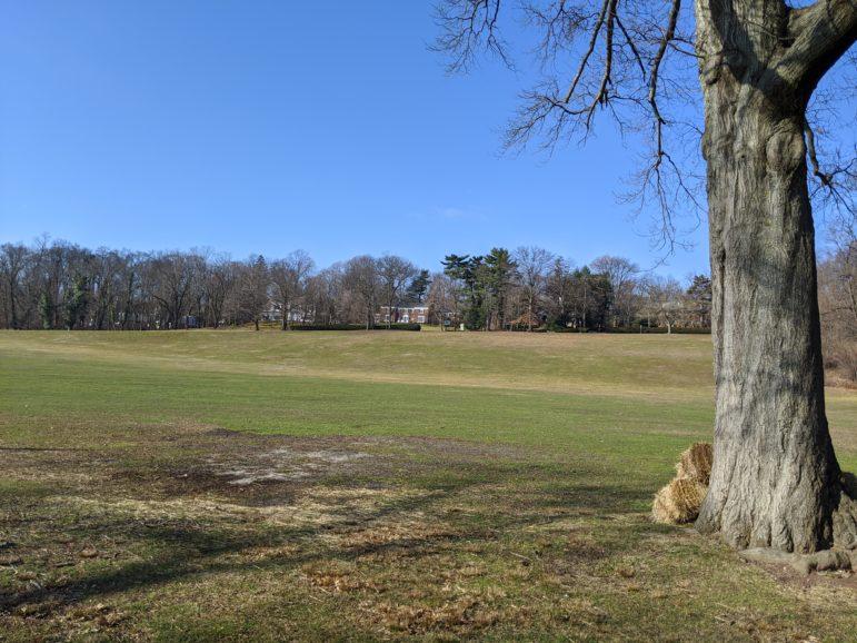 South Orange Tests Greener Ways to Manage Grass Turf