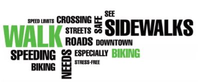 Creating a Roadmap for Safe Bicycle and Pedestrian Paths